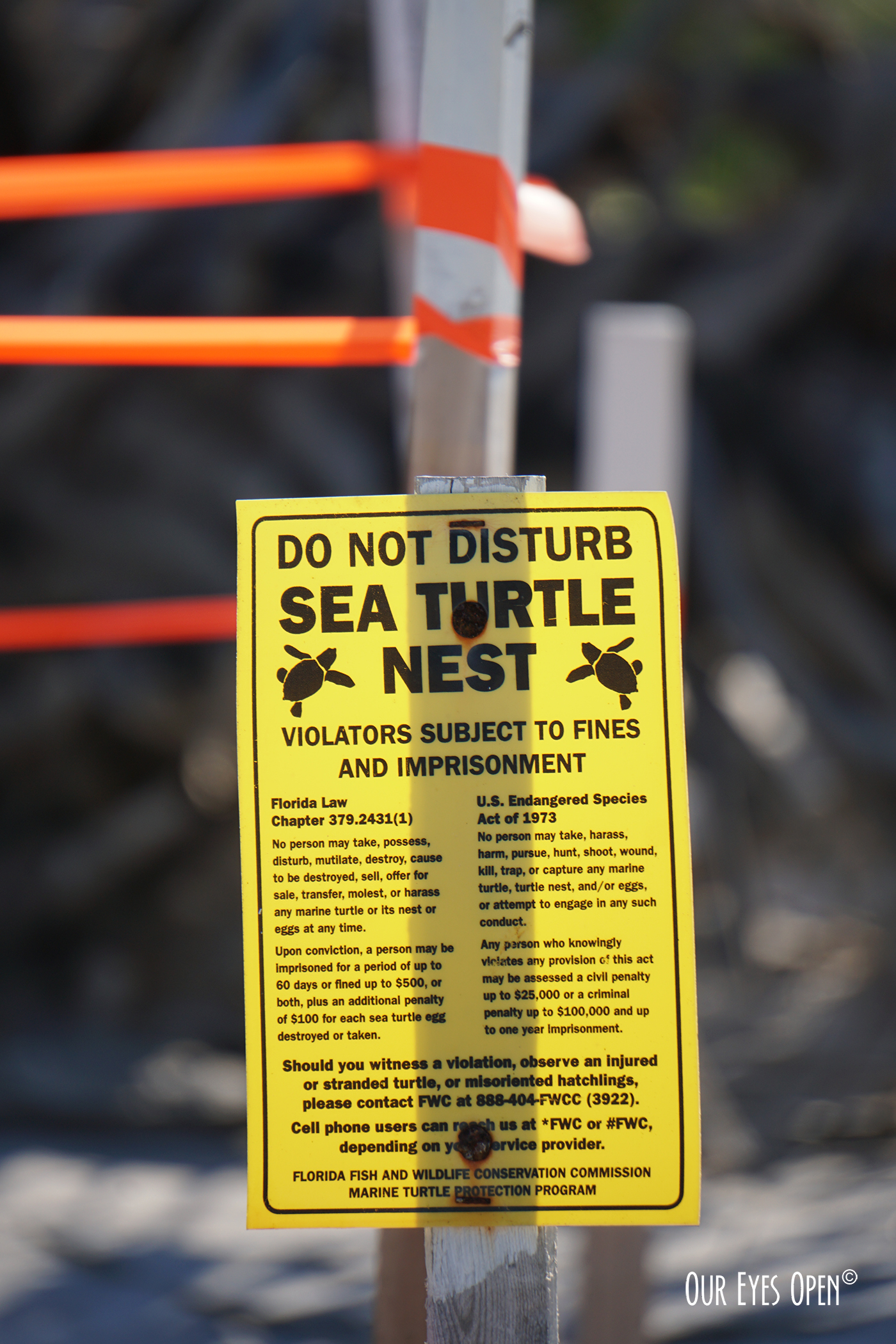 BEWARE, Do Not Disturb Sea Turtle Nest.