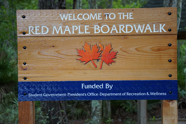 Red Maple Boardwalk, University of North Florida
