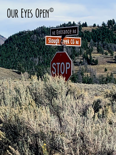 Entrance to Slough Creek from the NE Entrance Road in Lamar Valley, Yellowstone National Park.