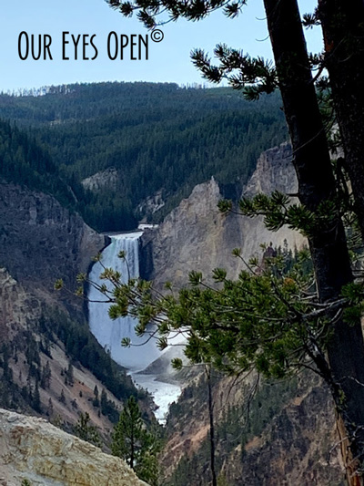 Lower Brink Waterfall at the Grand Canyon of Yellowstone.