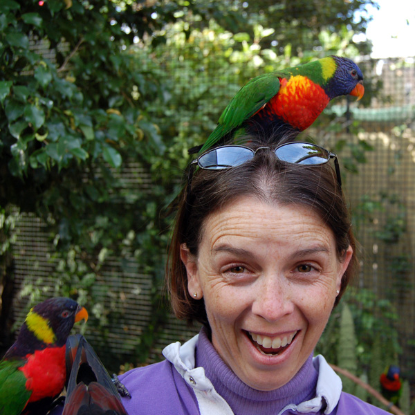 Lisa with Lorikeets on her head and arm while feeding time at Lowry Park Zoo in Tampa, Florida.