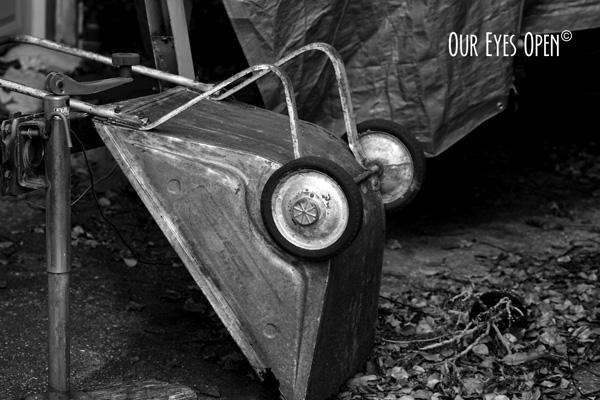 Rusty Garden Cart.