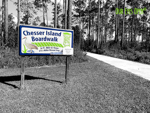 Chesser Island Boardwalk Sign at the trailhead in the Okefenokee Wildlife Refuge in South George. At the end of the boardwalk is a 4-story covered lookout tower.