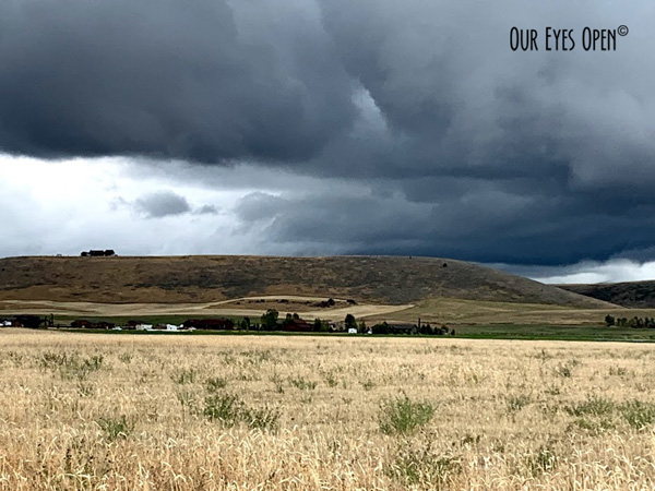 Rolling hills in Idaho with low storm clouds kissing the hills as a storm approaches.