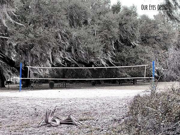 Volleyball net at Carney Island Park in Ocklawaha, Florida.
