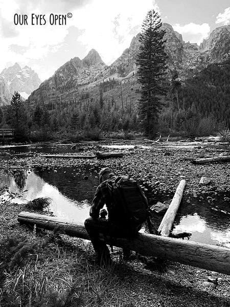 Make your own log bench on a nature trail in Grand Tetons.