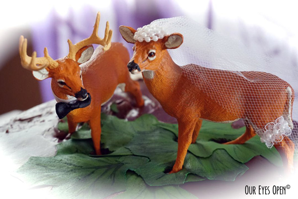 Buck and doe cake topper that sat on top of my sister-in-laws wedding cake for the reception.