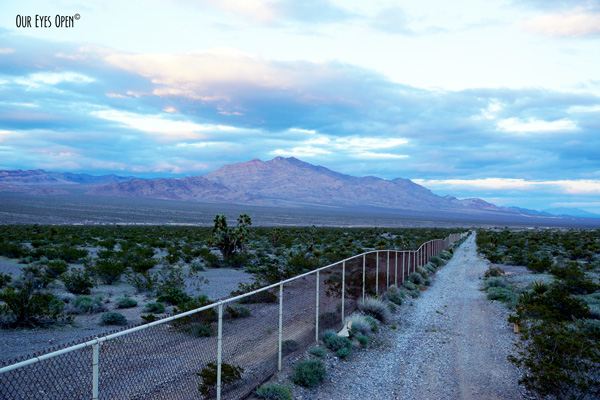 Desert Mountain at sunset with a Joshua Tree on the left side of the very long fence.