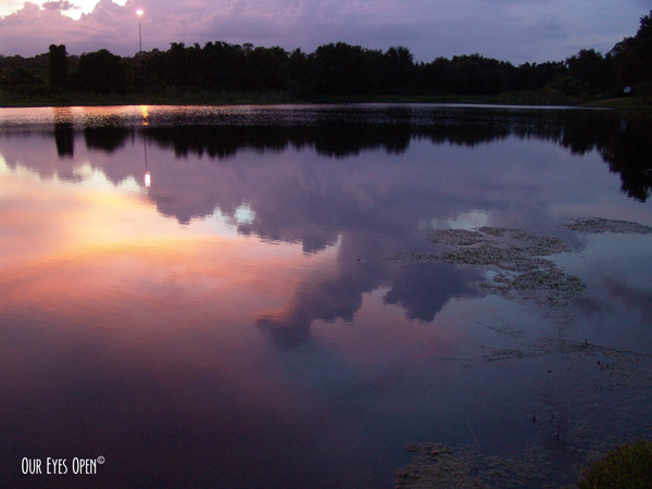 Multi-colored sunset with lots of pink hues reflect the clouds and color in the pond.