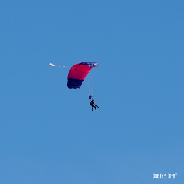 Tandem skydivers coming down after going up and being dropped off in a plane.  Perfect blue skies set the background.