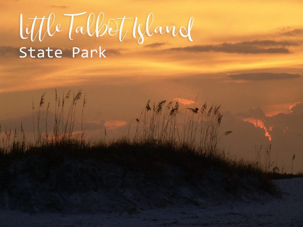 Dunes and sunset at Little Talbot Island State Park, Jacksonville, Florida.