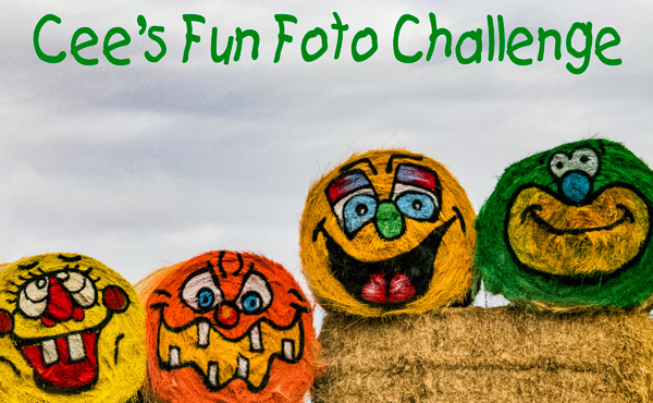 Cee's Fun Foto Challenge Badge
