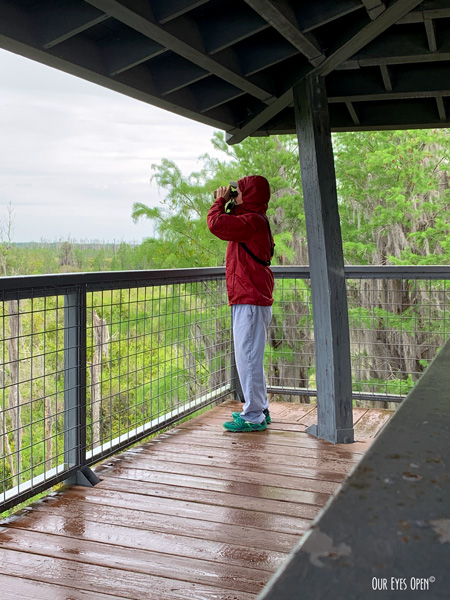 Donned in raingear, Frank looks out over the marsh under cover of the tower for birds while the rain comes down.