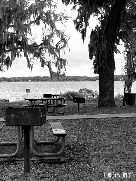 Picnic area at Carney Island Recreation & Conservation Area in Ocklawaha, Florida.