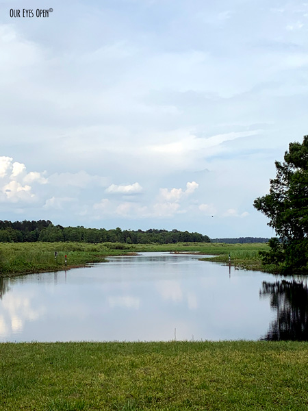 The view of where to launch a boat to explore Lake Ocklawaha near Orange Springs, Florida.